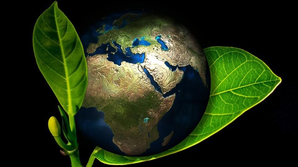 青年海外協力隊『環境教育』の活動内容/給料/合格倍率(動画つき)