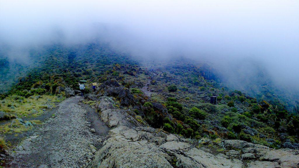 タンザニア登山の現地ツアーは「キリクライマーズ」を選定!