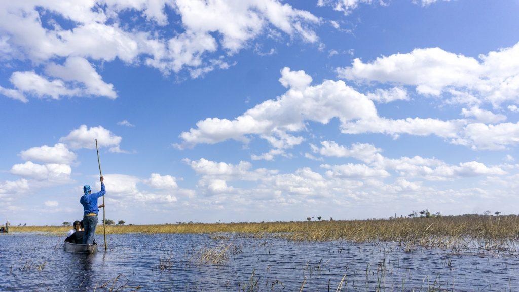 ボツワナの世界遺産「オカバンゴ・デルタ」とは