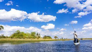 【ボツワナ】世界遺産「オカバンゴ・デルタ」の水上ツアーで贅沢なひととき