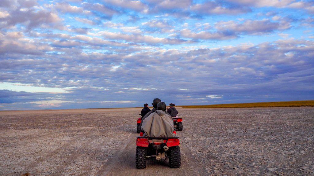 超広大なマカディカディ塩湖をバギーで駆け巡る!