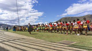 【2018】ズールー族伝統のリードダンス!動画で文化的迫力をおすそ分け