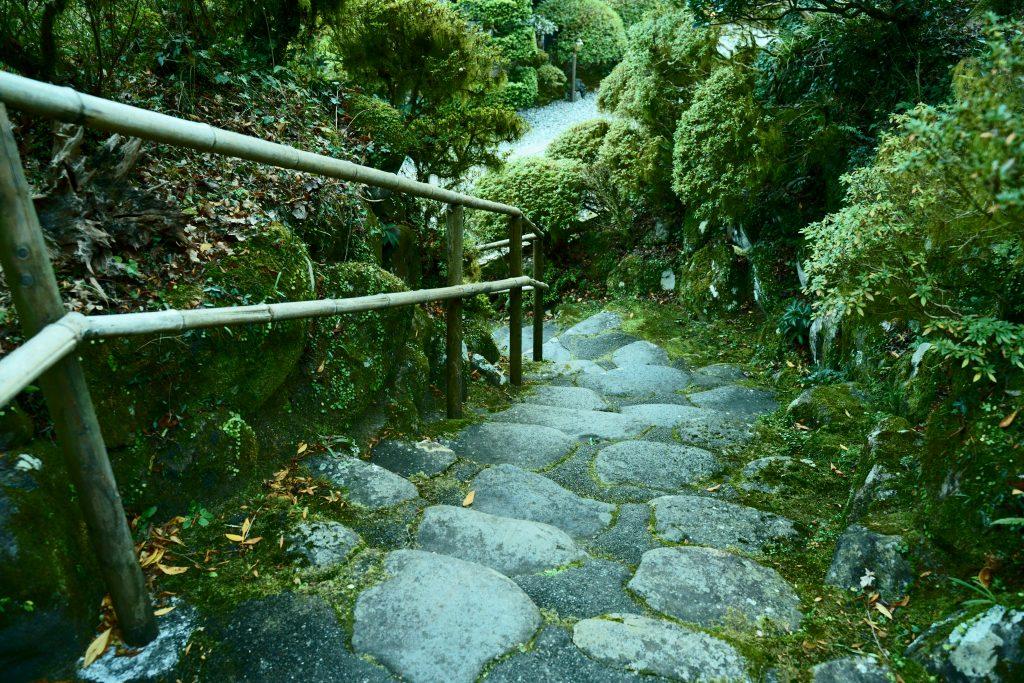 【α7III】SAMYANG単焦点広角レンズで撮影した歩道