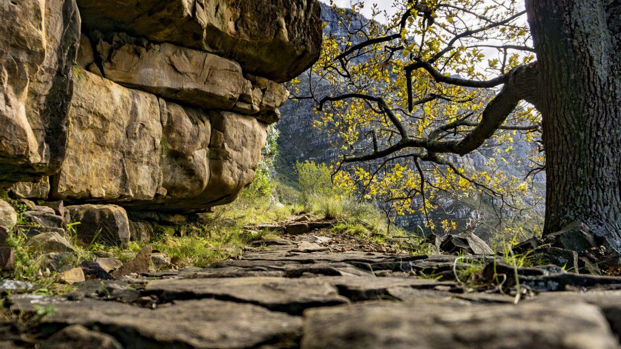 【南アフリカ共和国】ハイキング(トレッキング)スポット10選【まとめ】