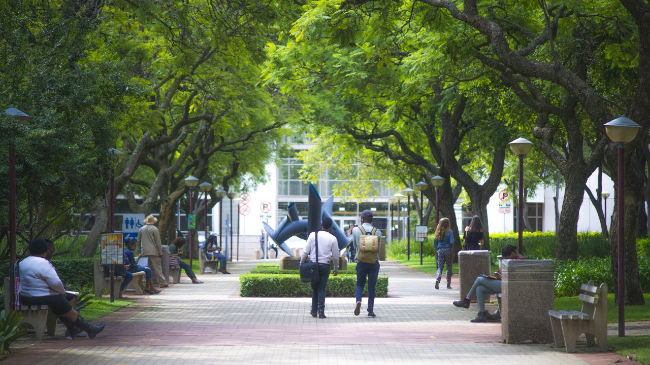 【2019】世界大学ランキングに基づく南アフリカの大学ランキング上位13